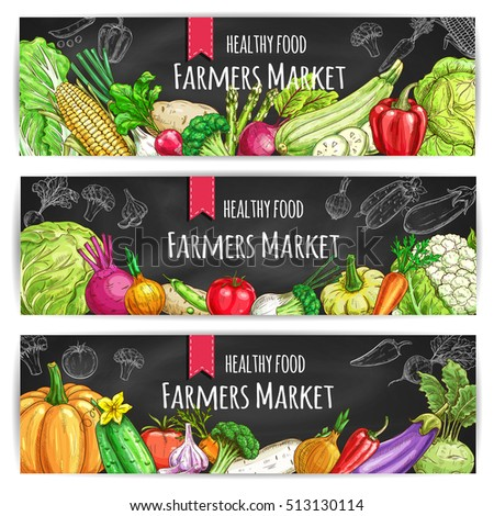 Veggies of farmer market. Vegetarian healthy food banners. Chalk sketch vegetable pumpkin and cabbage, onion, broccoli, pepper, cucumber, tomato, celery, radish, carrot and beet, potato on blackboard