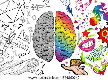 Versus human brain right and left hemisphere illustration. Creative concept vector design.