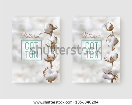 Vertical posters with photo realistic cotton branch on a light cotton balls background and text Natural Cotton with frame. Perfect for business labels, price textile