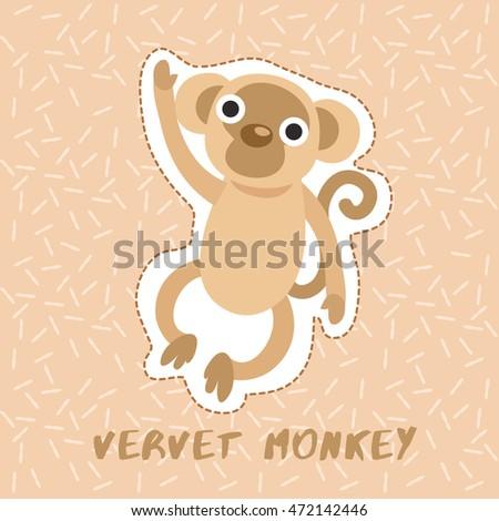 vervet monkey   cute animal set