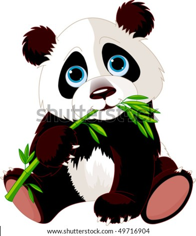 very cute panda eating bamboo