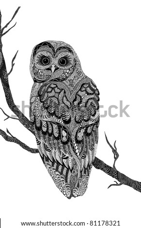 very detailed hand-drawn psychedelic owl, branch and owl on separate layers.