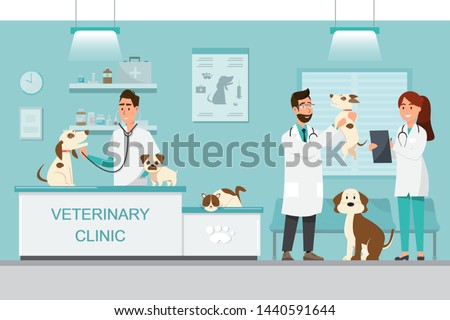 Veterinarian and doctor with dog and cat on counter in vet clinic. Vector illustration flat cartoon