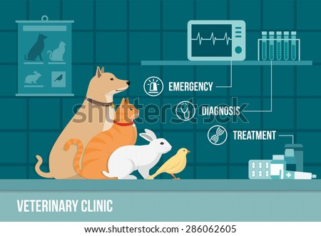 Veterinary clinic banner with dog, cat, rabbit, bird, medical equipment, drugs and icons set