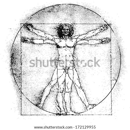 Vetruvian man, human anatomy study by Leonardo da Vinci, line graphic, vector illustration