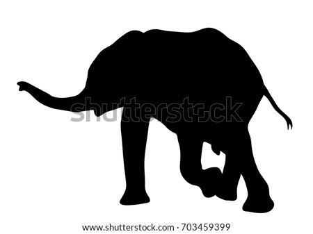 view on the silhouette of an