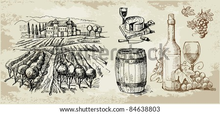 vineyard-original hand drawn collection - stock vector