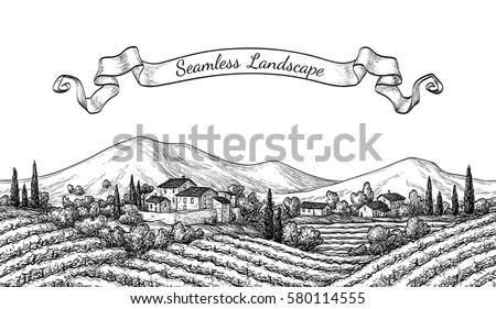 vineyard seamless landscape....