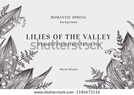 Vintage background with lilies of the valley and ferns. Vector botanical illustration. Black and white.
