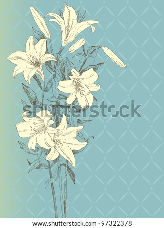 Vintage background with lily flower