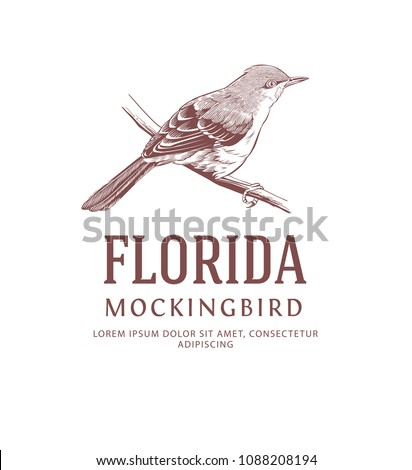 Vintage Bird Logo. Mockingbird. State Bird Symbol of Florida