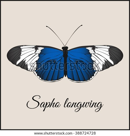 Vintage card with butterfly. Minimal flat vector illustration. Sopho longwing. Lettering handwriting calligraphy. Vintage or retro greeting postcard.Print or web.Packing