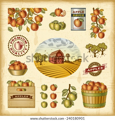 vintage colorful apple harvest