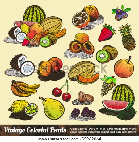 Vintage Colorful Fruits Collection - Set of Various Design Elements created from original hand draw