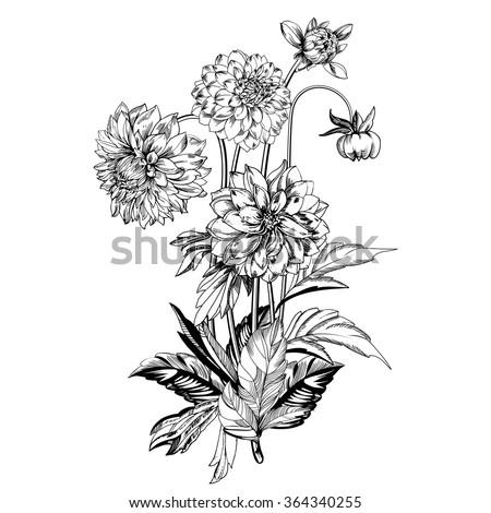 vintage elegant flowers black