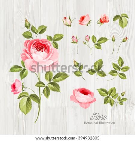 vintage flowers set over wooden