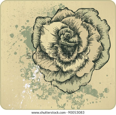 Vintage frame with blooming roses, hand-drawing. Vector illustration
