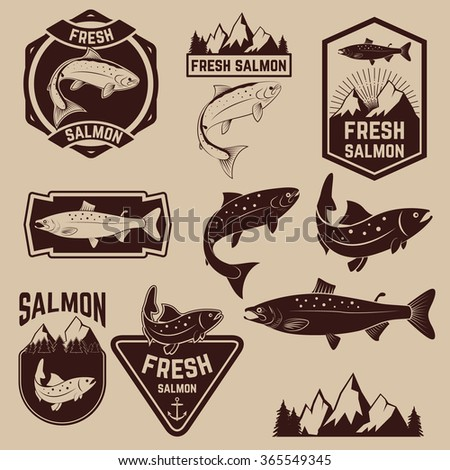 vintage fresh salmon fish