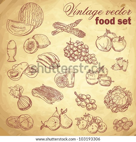 Vintage hand-drawn food set with various fruit and vegetables - stock vector