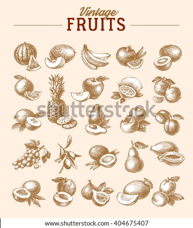 Vintage hand drawn sketch fruits set. Eco foods.Vector illustration