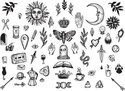 Vintage illustration clipart graphics bundle