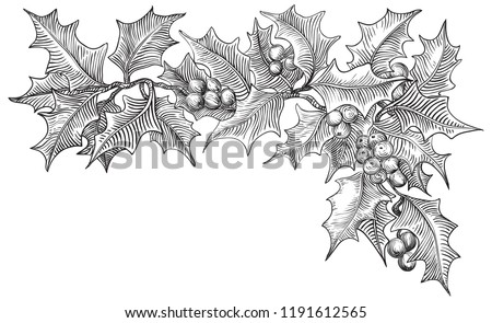 Vintage Merry christmas border. Vector  holly branches isolated on white background at retro hand drawn style.