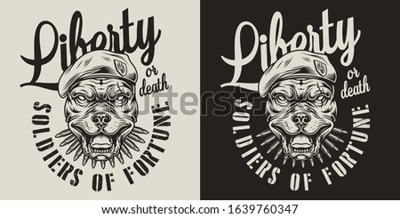 Vintage military monochrome emblem with bullets and angry pitbull head in navy seal beret isolated vector illustration