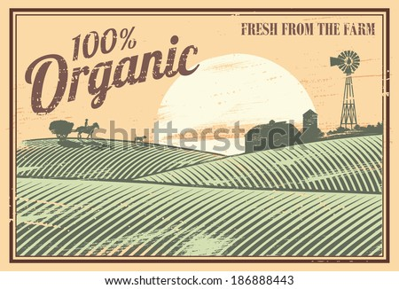 vintage organic farm