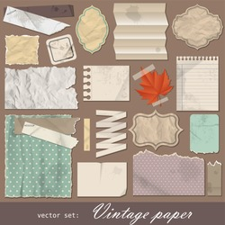 Vintage paper set. Vector illustration with design scrapbooking elements.