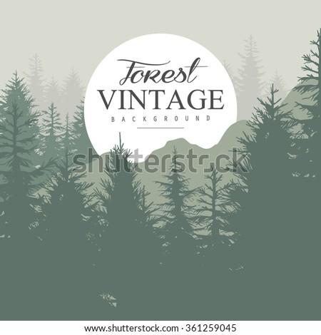 vintage pine forest hand drawn