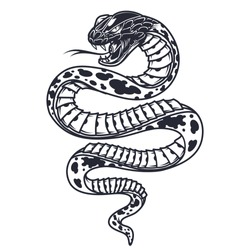 Vintage poisonous snake template in monochrome style isolated vector illustration