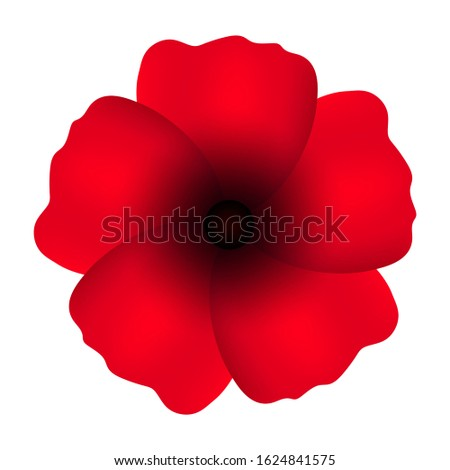 vintage red poppy  great design