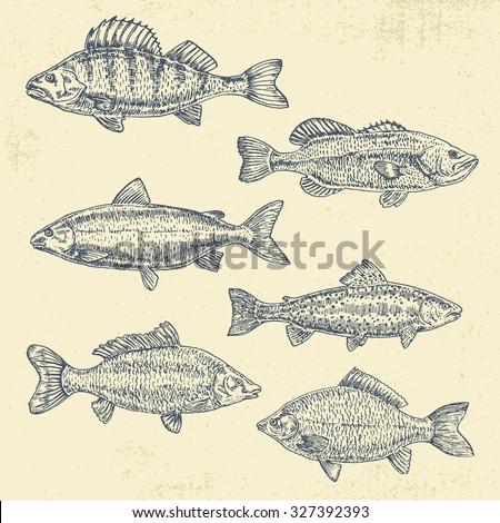 vintage sea illustration. hand...