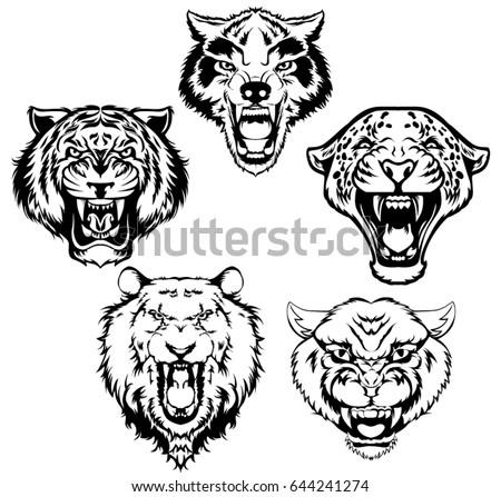 Vintage set of animal head. Tiger, lion, panther, wolf, leopard head vector illustration.