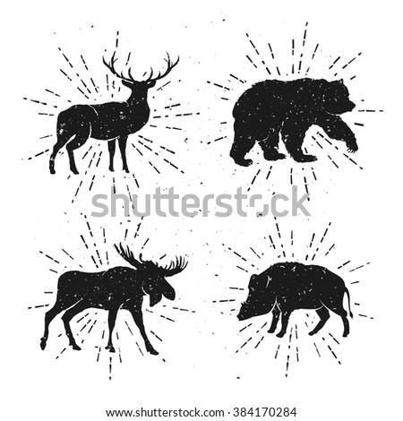 Vintage set of Wild Animals. Bear, Deer, Moose and Wild Hog. Vector illustration with elements for your logo, badge, label, poster, apparel, t-shirt, project, business and art works.