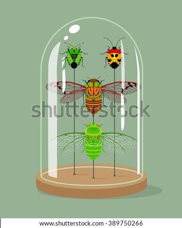 vintage taxidermy cicadas and...