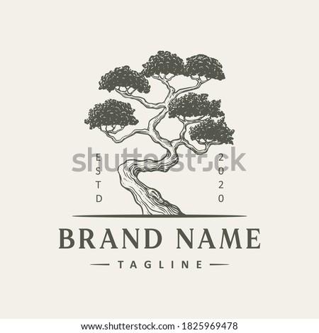 vintage tree logo design illustration Сток-фото ©
