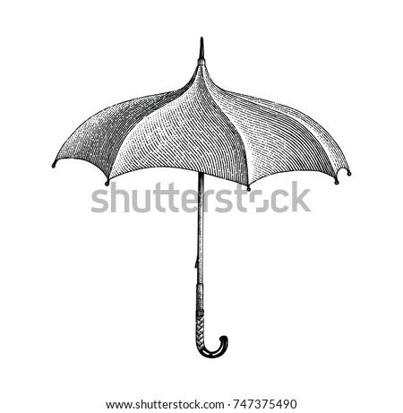 vintage umbrella hand drawing...