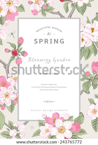 Vintage vector vertical card spring. Branch of apple tree blossoms pink flowers on gray background.