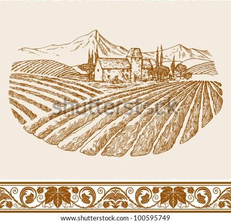 vintage wine label background