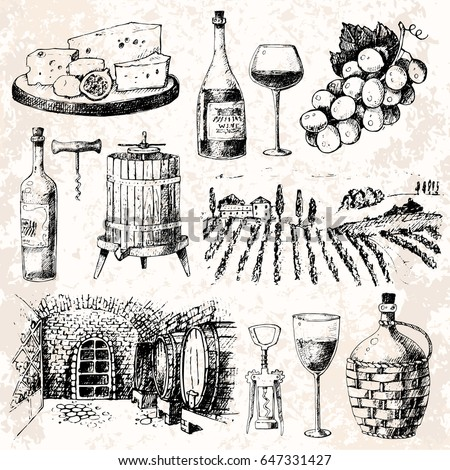 Vintage winery wine production handmade drawn draft wine making sketch fermentation grape drink old vintage vector illustration