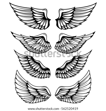 vintage wings isolated on white