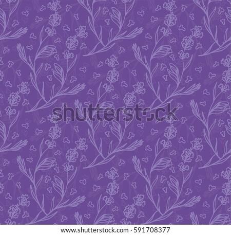 violet color lavender flower