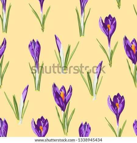 violet crocuses flowers