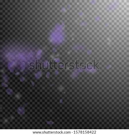 Violet flower petals falling down. Mind-blowing romantic flowers corner. Flying petal on transparent square background. Love, romance concept. Alive wedding invitation.