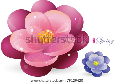 Violet flower, vector illustration, eps-10