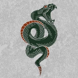 Viper snake. Hand drawn vector illustration in ink technique on grunge background, good for poster, sticker, tee shirt design.