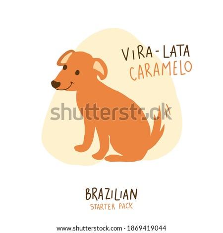 Vira Lata Caramelo. Caramel Dog. Brazilian Portuguese Hand Lettering Calligraphy with drawing dog. Brazilian Starter Pack. Vector. Zdjęcia stock ©
