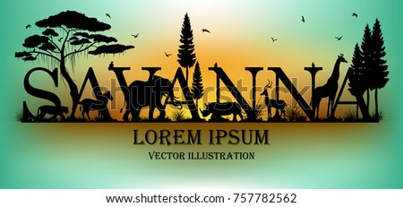 Visual drawing of savanna text design and silhouette of animal on Australia map of landscape with wildlife and sunset background for vector illustration