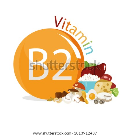 Vitamin B2. Natural organic products with the maximum content of vitamin B2.